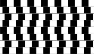 ilusion optica 8
