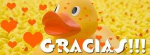 gracias cumple 20 el blog de patogiacomino